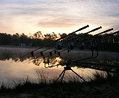 My rods at dawn
