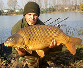 Fantastic common carp in a fantastic day