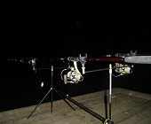 My rods at night