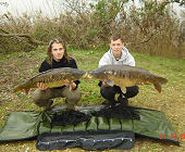 Linear carps - 24.3 Lbs and 33.1 Lbs