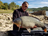 See biloute04's common carp photo
